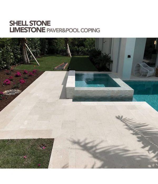 Shell Stone Travertine Pavers Inspiration